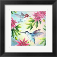 Framed Bee Hummingbirds