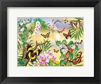 Framed Butterflies Up IN The Canopy