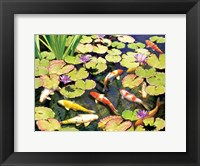 Framed Koi Pond IV