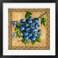 Framed Blueberries