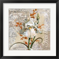 White Iris Fantasy Framed Print
