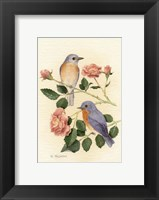 Framed Bluebird I