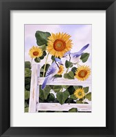 Framed Bluejays And Sunflowers