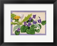 Framed Dandelion And Violets