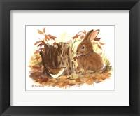 Framed Wren & Bunny
