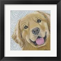Framed Dlynn's Dogs - Cosmo