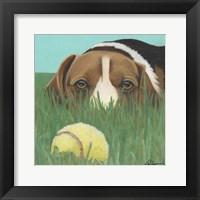 Framed Dlynn's Dogs - Sunny