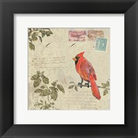 Framed Bird & Postage IV
