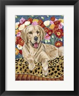 Framed Golden Boy Retriever