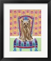 Framed Crown Princess Yorkie