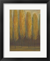 Framed Soft Sienna