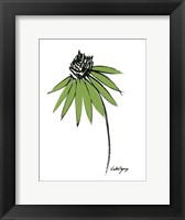 Graphic Cone Flower I Framed Print