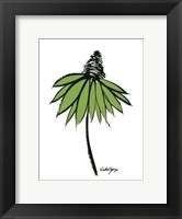 Framed Graphic Cone Flower II