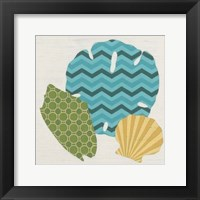 Shell Patterns I Framed Print