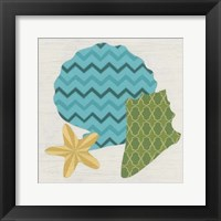 Shell Patterns II Framed Print