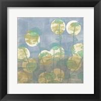 Spotlight Floral II Framed Print