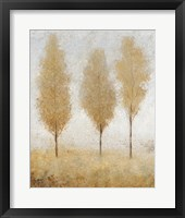Autumn Springs I Framed Print