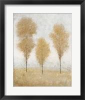 Autumn Springs II Framed Print