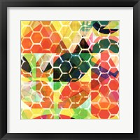 Framed Honey Comb I