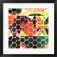 Framed Honey Comb II