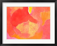 Cabbage Rose II Framed Print