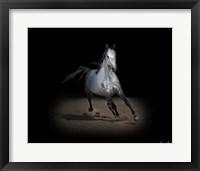 Framed Horse Portrait IX