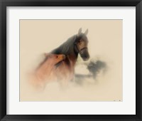 Framed Horse Portrait X