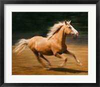 Framed Blazing Horse I