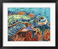 Sea Sweetheart I Framed Print