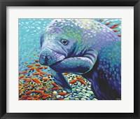 Sea Sweetheart II Framed Print