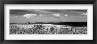 Shore Panorama III Framed Print