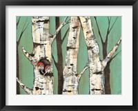 Birch Grove on Teal I Framed Print