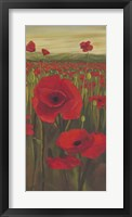 Framed Red Poppies in Field II