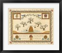 Garden Sampler II Framed Print