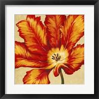 Parrot Tulip II Framed Print
