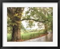 Framed Wet Path