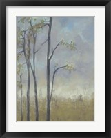 Tree-Lined Wheat Grass II Framed Print