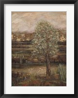Field of Dreams II Framed Print