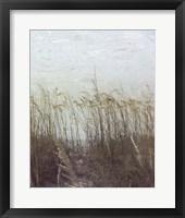 Framed Through the Dunes II