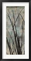 Wild Grasses I Framed Print