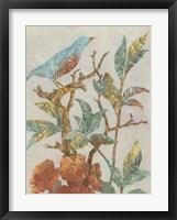 Aviary Collage I Framed Print