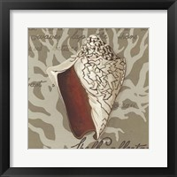Seaside Sonnet IV Framed Print