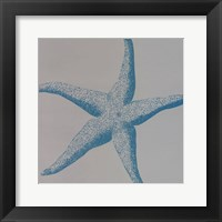 Framed Sea Stars II