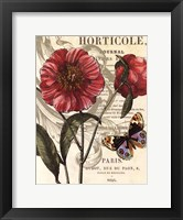 Framed Paris Horticole