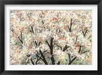 Framed Pear Blossoms in Spring