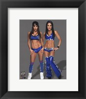 Framed Bella Twins 2014 in blue
