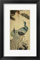Framed Korean Peacocks