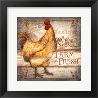Framed Farm Fresh Rooster