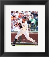 Framed Brandon Crawford on the field 2014