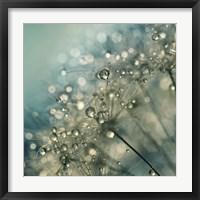 Framed Indigo Sparkles